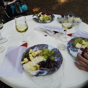Weinwanderung 2015